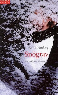 Snögrav : historisk kriminalroman