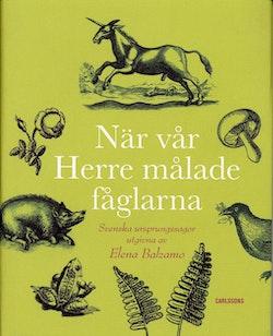 När vår Herre målade fåglarna : svenska ursprungssagor