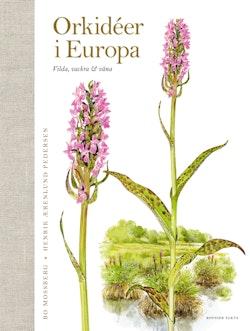 Orkidéer i Europa : vilda, vackra & väna