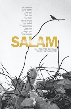 Salam : om krig, fred och islam