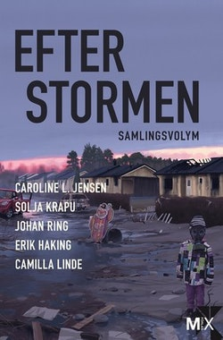 Efter stormen : utökad samlingsvolym